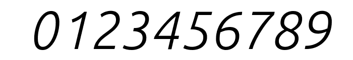 Ubuntu Light Italic Font OTHER CHARS
