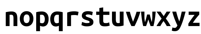 Ubuntu Mono Bold Font LOWERCASE