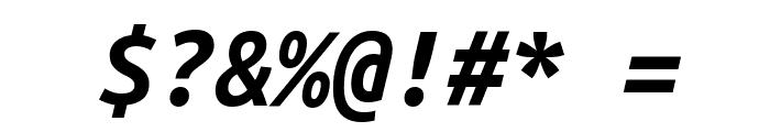Ubuntu Monospaced Bold Italic Font OTHER CHARS