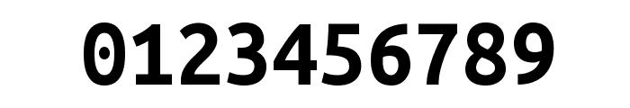 Ubuntu Monospaced Bold Font OTHER CHARS