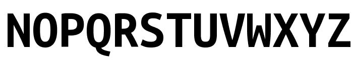 Ubuntu Monospaced Bold Font UPPERCASE