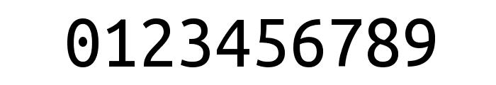 Ubuntu Monospaced Font OTHER CHARS