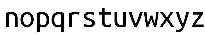 Ubuntu Monospaced Font LOWERCASE
