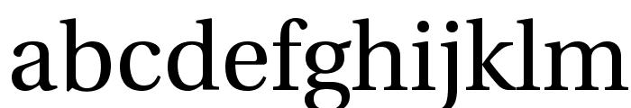 UHo?i 1.1 Font LOWERCASE