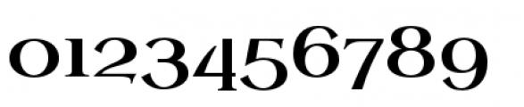 Uncial Antiqua Pro Font OTHER CHARS