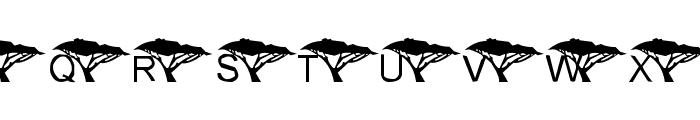 Under An Acacia Tree Font UPPERCASE