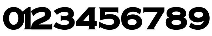 Universal Serif Font OTHER CHARS