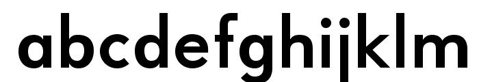 UniversalisADFStd-Bold Font LOWERCASE