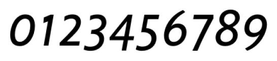 Unita Italic Font OTHER CHARS