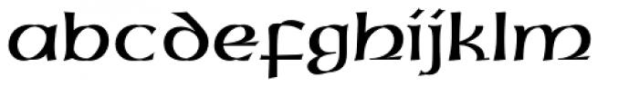 Uncial Std Font LOWERCASE
