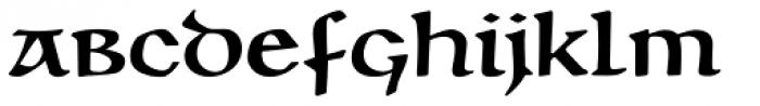 Unciala Pro D Medium Font LOWERCASE