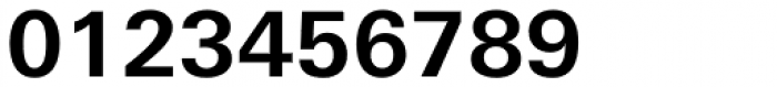 Univers Next Arabic Std 630 Bold Font OTHER CHARS