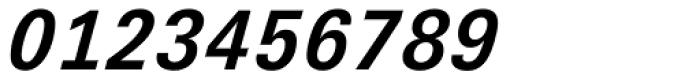 Univers Next Pro 631 Typewriter Bold Italic Font OTHER CHARS