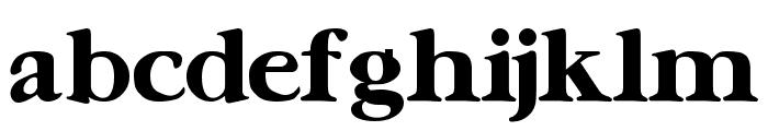 UrsaSerif Bold Font LOWERCASE