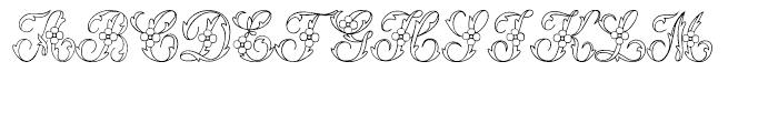 Urszula 2 Font UPPERCASE
