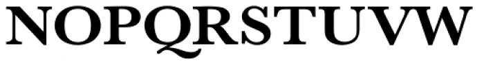 URW Baskerville ExtraWide Bold Font UPPERCASE