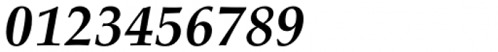 URW Palladio Bold Italic Font OTHER CHARS