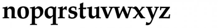 URW Palladio Bold Font LOWERCASE