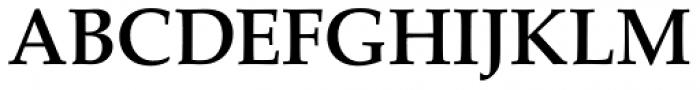 URW Palladio Medium Font UPPERCASE