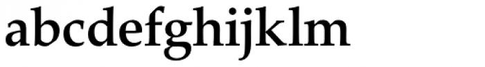 URW Palladio Medium Font LOWERCASE
