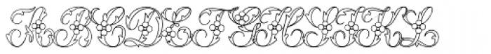 Urszula 2 Font LOWERCASE