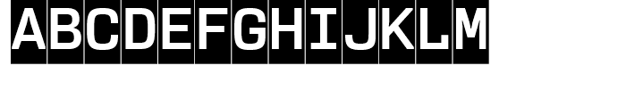 User Upright Bold Cameo Font UPPERCASE