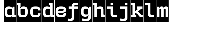 User Upright Bold Cameo Font LOWERCASE