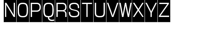 User Upright Light Cameo Font UPPERCASE