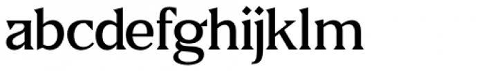US Blaak Medium Font LOWERCASE