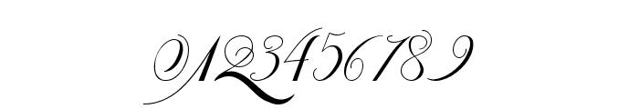 Van den Velde Script Font OTHER CHARS