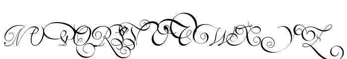 Van den Velde Script Font UPPERCASE