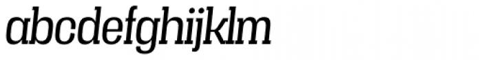 Vacer Serif Book Italic Font LOWERCASE