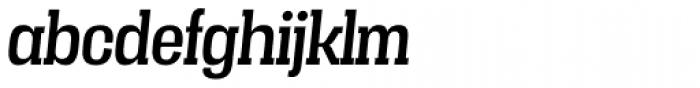Vacer Serif Italic Font LOWERCASE