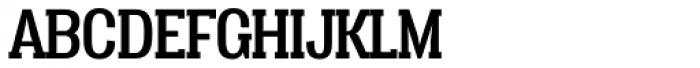 Vacer Serif Regular Font UPPERCASE