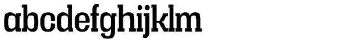 Vacer Serif Regular Font LOWERCASE