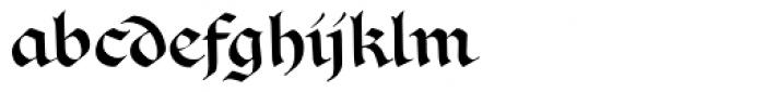 Vadstenakursive Font LOWERCASE