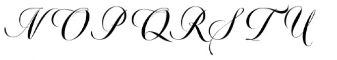 Valentia Nit Condensed Font UPPERCASE