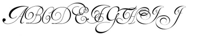 Van Den Velde Script Pro Font UPPERCASE