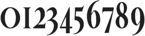 Veera otf (700) Font OTHER CHARS
