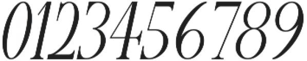 Vera Oblique otf (400) Font OTHER CHARS