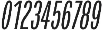 Verbatim Lite Condensed Oblique otf (400) Font OTHER CHARS