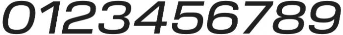 Verbatim Lite Wide Medium Oblique otf (500) Font OTHER CHARS