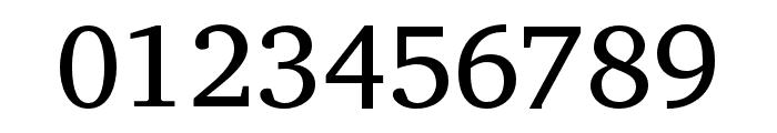 Veleka-Regular Font OTHER CHARS