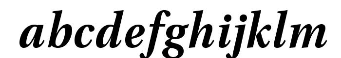 VenturisADF-BoldItalic Font LOWERCASE