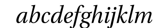 VenturisADF-Italic Font LOWERCASE