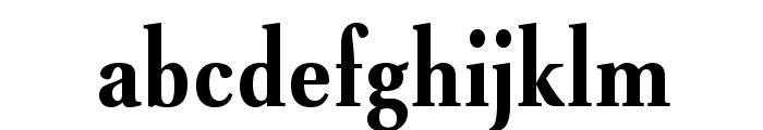 VenturisADFNo2Cd-Bold Font LOWERCASE