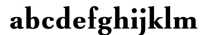 VenturisADFNo2Med-Bold Font LOWERCASE