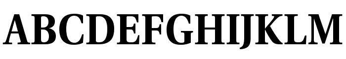 VenturisADFStyle-Bold Font UPPERCASE