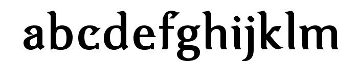 VenturisOldADF-Bold Font LOWERCASE