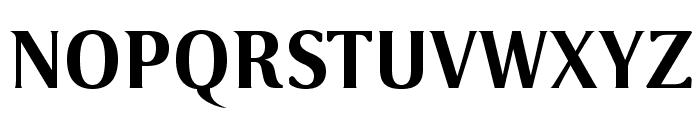 VenturisSansADF-Bold Font UPPERCASE